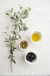 olive oil:olives